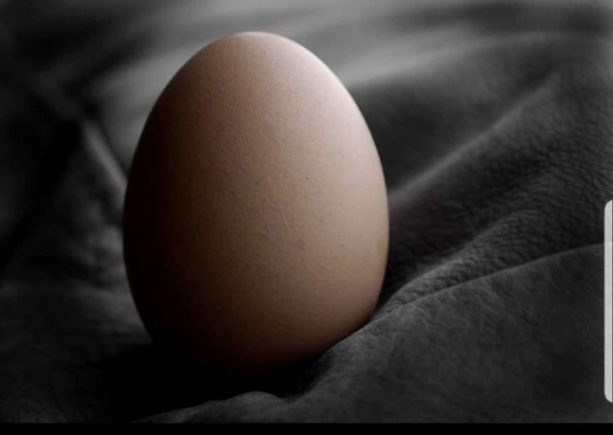 Kiasan Melalui TelurAyam