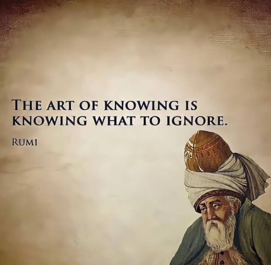 Rumi – The Art Of Knowing Is To Know What To Ignore